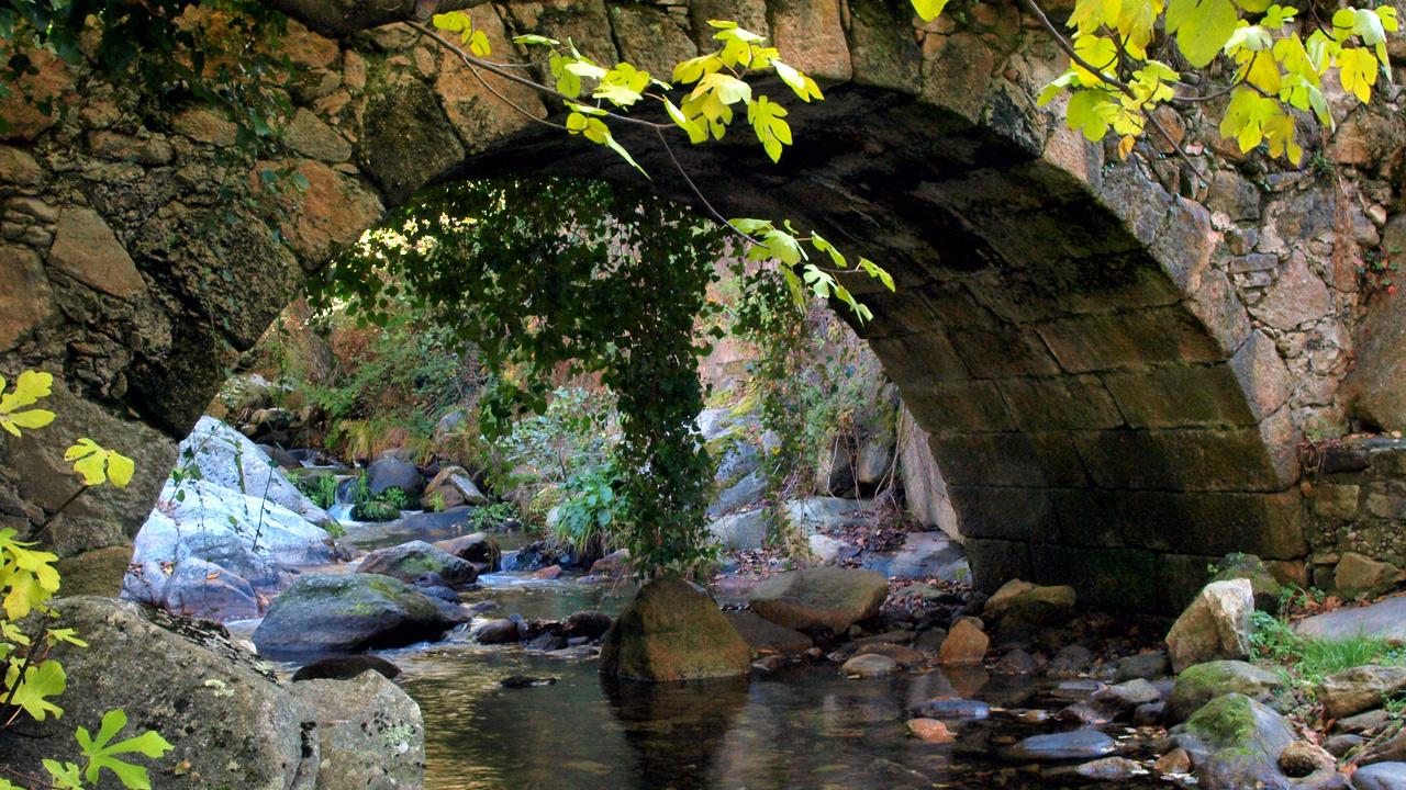 Casas del Monte. Puente sobre el río. Fotografía cedida por DIVA.
