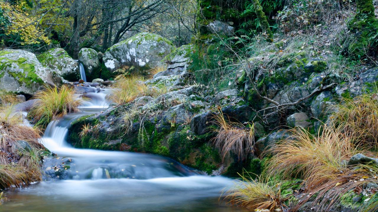 Aguas cristalinas del Río Ambroz. Fotografía cedida por DIVA.