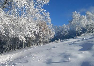 La Garganta. Paisaje Nevado. Fotografía: Susana Moreno.